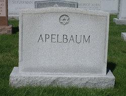 Pauline <I>Shillin</I> Apelbaum