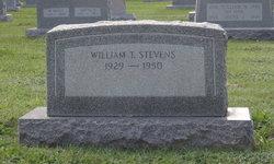 William T Stevens