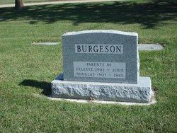 Celeste Eunice Burgeson