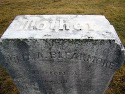 Julia Ann <I>McGrew</I> Bleakmore