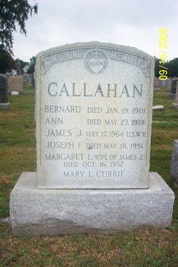 James J Callahan