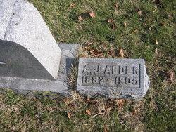 Albert John Alden