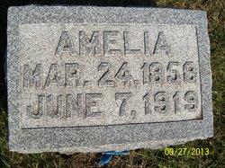 Amelia M. <I>Stevens</I> Pecht