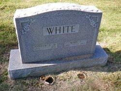 Andrew B White, Jr