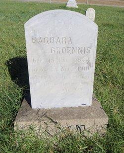 Barbara <I>Loewen</I> Groening