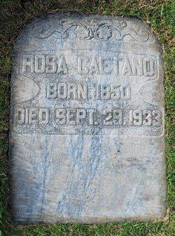 Rosa Caetano