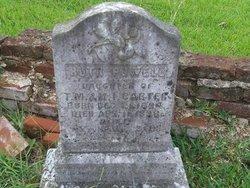 Ruth Powell Carter