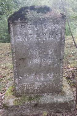 Rev C. K. Anthony