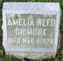 Dr Amelia <I>Weed</I> Gilmore