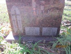 Anna L. <I>Murphy</I> Cull