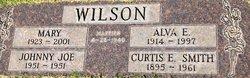 Johnny Joe Wilson