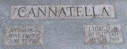 Andrew J. Cannatella