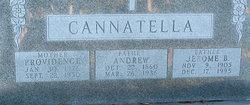 Jerome B. Cannatella