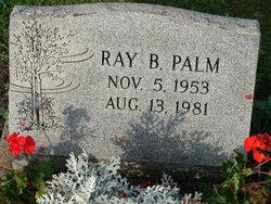 Ray Byron Palm