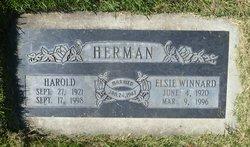 Harold Herman