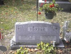 Patricia <I>Lasher</I> Herber