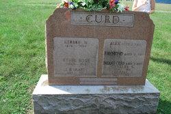 Raymond Curd