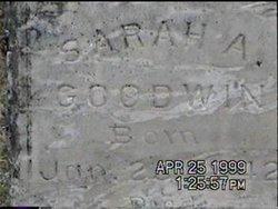 Sarah A. <I>Stanbrough</I> Goodwin
