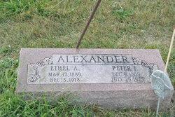 Peter F Alexander