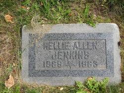 Hannah Nellie <I>Allen</I> Jenkins