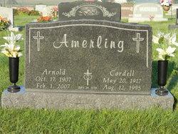 Arnold S Amerling