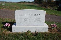 Gunda Baldine <I>Gubrud</I> Flatland