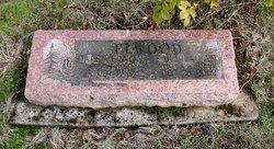 Dale Vernon Elwood