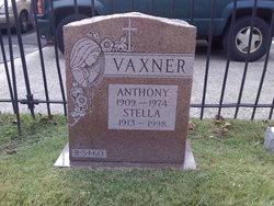 Anthony Vaxner