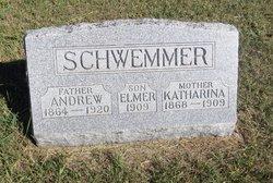 Andrew Schwemmer