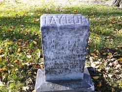 Frances Maude Taylor