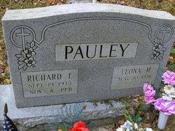 Richard E Pauley