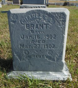 Charles A Brant