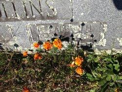 Elizabeth Ann <I>Hopkins</I> Collins