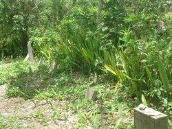 Fakahatchee Cemetery