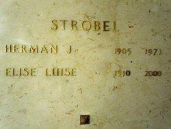 Herman John Strobel