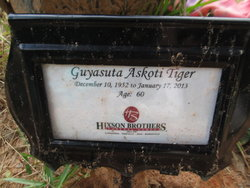 Guyasuta Askoti Tiger