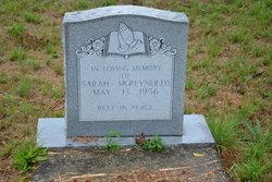 Sarah McReynolds