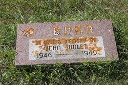 Jean Violet Bahr