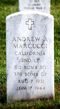 Andrew A Marcucci