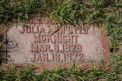 Julia Ann <I>Dyer</I> McKnight