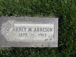 Arney M Arneson