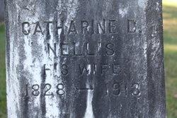 Catherine <I>Nellis</I> Vanderveer Cossart