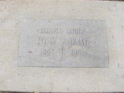 Tony Adame