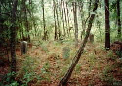 Sulphur Spring - Willson Cemetery