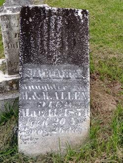 Sarah E Allen