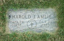 Harold J Amlie