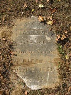 Laura C Vary