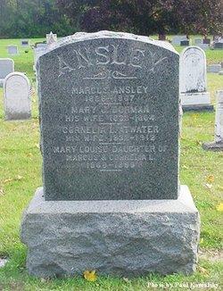 Mary Jane <I>Dorman</I> Ansley