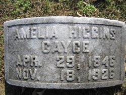 Amelia Bethenia Winn <I>Higgins</I> Cayce