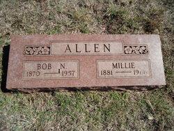 Millie Lee <I>Lowry</I> Allen